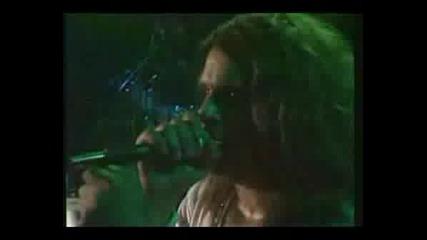 Sabbath Live War Pigz