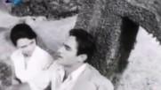 Тютюн, 1961 г. (откъс)