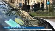 Париж забрани старите коли