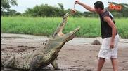 Екскурзоводи на сантиметри от смъртоносни крокодили