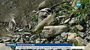 Екологична катастрофа в река Ботуня