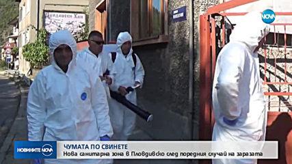 Нова санитарна зона в пловдивско заради африканската чума