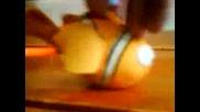 Немо И Оранжевия