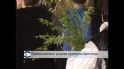 Православната църква празнува Цветница