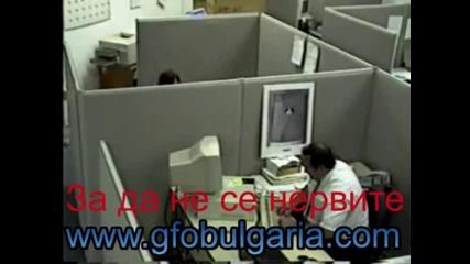 Публикуване на Гфо - www.gfobulgaria.com