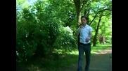 Dzenit Ibraimovski & Juzni vjetar - Kafana je moj drugi dom