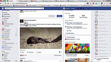 Как да свалим видео от Facebook