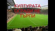 Родните стадиони