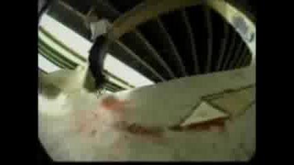 Bam Margera - Скейтър