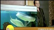 Ивана ft. Бианка - Уникaлнa [официално видео] H Q