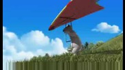 Bernard - Hang Gliding
