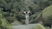 Cali - C'est Quand Le Bonheur (Live 2006) (Оfficial video)