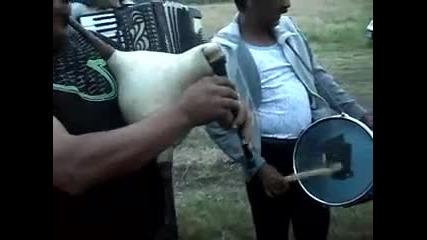 petko gaida ku4ek 2012 video