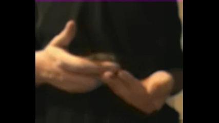 Дегу - гризач