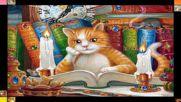 Чело коте книжки! ... ...