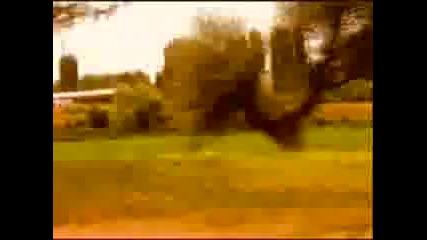 Kingsize - Dvama