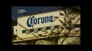 Мегазаводи: Corona ( Бг Аудио )