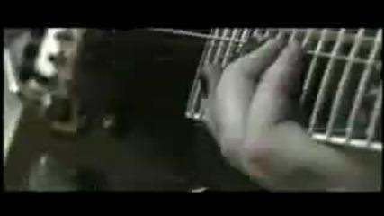 [hd] Children Of Bodom - Smile Pretty For The Devil