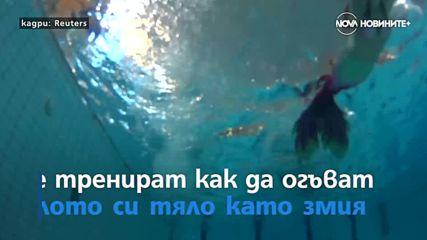 Уроци по плуване като русалка и автоизложението в Детройт