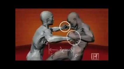 learn to fight in 5 min