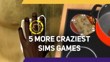 5 More Craziest Sims