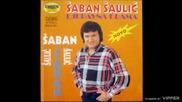 Saban Saulic - U nadanju zivi se i mre - (Audio 1994)