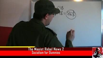 Социализъм за глупаци и за начинаещи