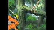 Naruto Tribue