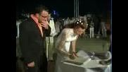 Нашата Незабравима Сватба - Аквапарк Несебър