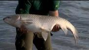 Ribolov na Ezeroto za trofeinite sharani 05
