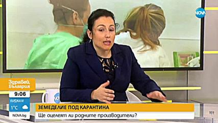 Танева: Няма риск от пренасяне на коронавирус чрез храната