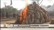 Демонстративно изгаряне на 15 тона бивни на слонове в Кения