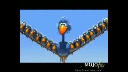 Тъпа Птица