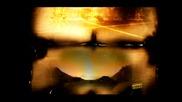 Камелия  -  Залеза и Зората