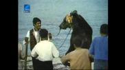 Бягство В Ропотамо 1973 Бг Аудио Целият Филм Tv Rip Бнт Свят