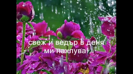 С дъжда - Таня Матеева