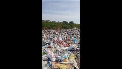 """От """"Моята новина"""": Замърсяване"""