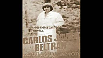 Carlos Javier Beltran - Que seas Feliz (argentina 1969)