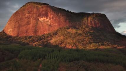 Изгубената гора | Късометражен документален филм
