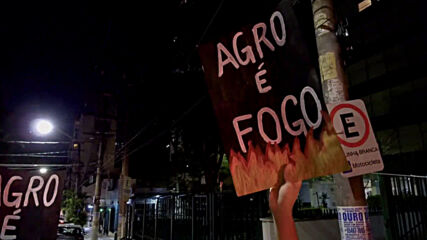 Brazil: Activists protest against Bolsonaro's climate policies as fires ravage Pantanal region
