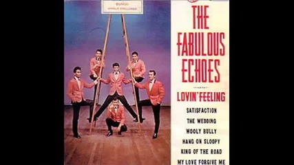 The Fabulous Echoes - Hang on Sloopy