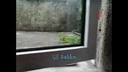 Малък Sekko
