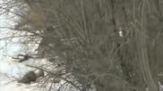 Хеликоптер помага на елен да достигне брега на замръзналото езеро!