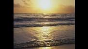 Море От Любов...