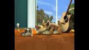 Twisted Whiskers - Разкарай котката