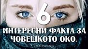 6 Интересни Факта за Човешкото Око