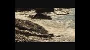 Zoran Dragovic - Odlazim / Al Bano & Romina Power - Liberta / - prevod