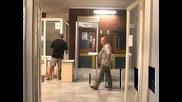 Арестуваха вносител на цитрусови плодове заради източване на ДДС