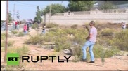 State of Palestine: Violence hits Ramallah on 'Day of Rage'
