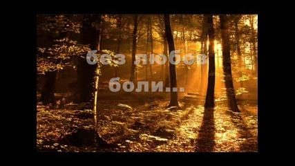 Еми Стамболова - Открадната зора+текст